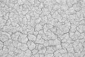 foto of grayscale  - dry cracked soil texture and background on dry season  - JPG