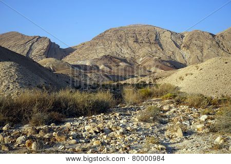 Wadi In Desert