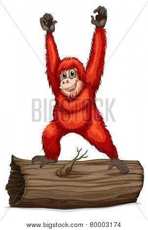 Illustration of an orangutan on a log
