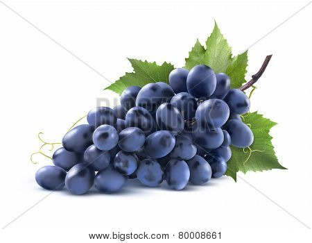 Blue Grapes Bunch With Leaf Isolated On White Background