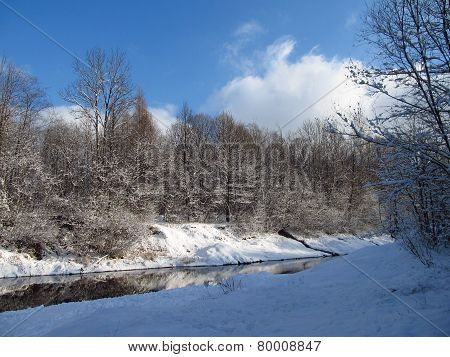 winter in the nature