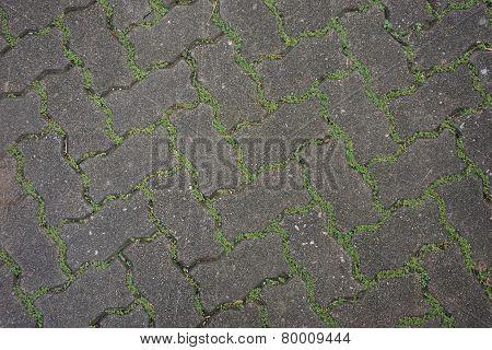 Cement Block Walking Way