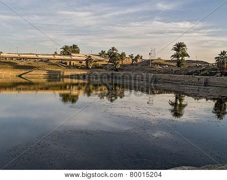 Sacred Pond Amon-ra