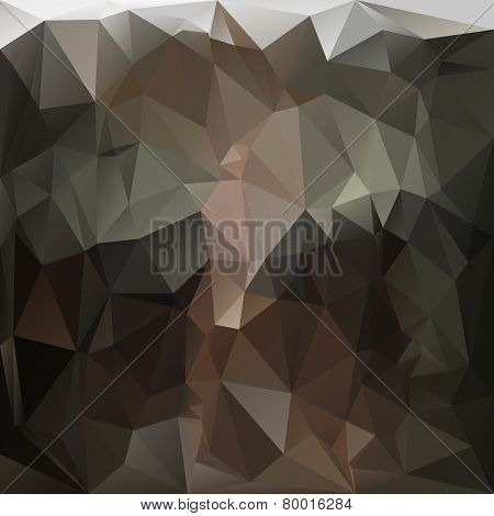 Vector Polygonal Background - Triangular Design In Anthracite C