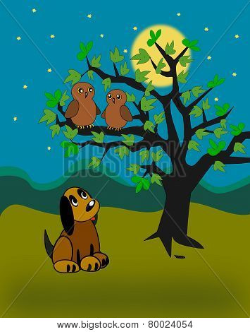 Little Dog and Owls.