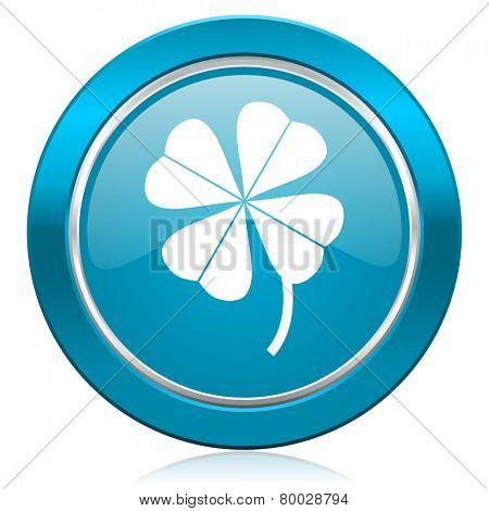 four-leaf clover blue icon