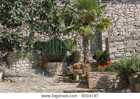 Garden in Hum