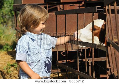 child with calf