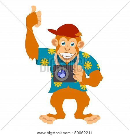 Monkey With A Cam