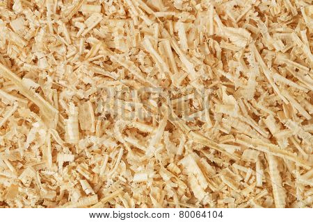 Background of wooden shavings and sawdust