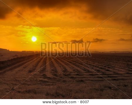 Rural Sunrise