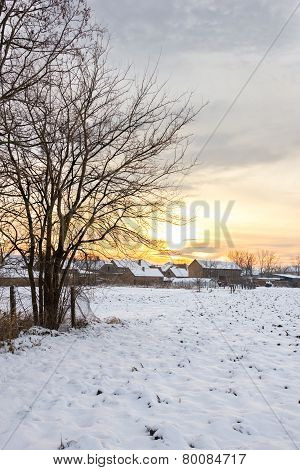 Winter Landscape With Snowy Countryside Village Next To Snow Cornfield