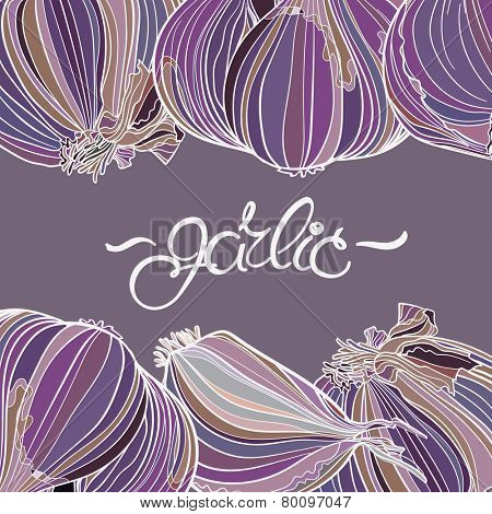 Garlic background. Borders with place for text. Purple colors, lettering. Good for menu, card, poster, label.