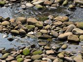 foto of foreground  - water flowing between straight lines of pebbles with blurred background and foreground - JPG