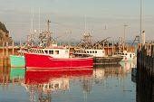picture of lobster boat  - Popular lobster fishing village Alma on New Brunswick coast - JPG