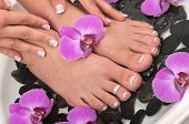 pic of healing hands  - Pedicured feet - JPG