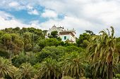 picture of hilltop  - This is a lonely villa on a hilltop - JPG
