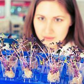 picture of modifier  - woman study of genetic modified GMO plants in the laboratory - JPG