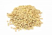 stock photo of legume  - legumes on whire background - JPG