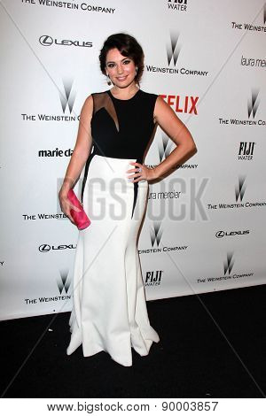 LOS ANGELES - JAN 11:  Kelly Brook at the The Weinstein Company / Netflix Golden Globes After Party at a Beverly Hilton Adjacent on January 11, 2015 in Beverly Hills, CA