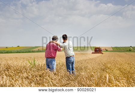 Business Partners On Wheat Field