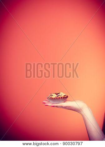 Sweet Cake Cupcake On Woman Hand
