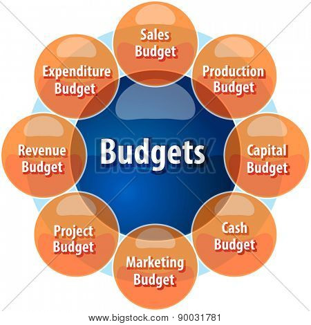 business strategy concept infographic diagram illustration of types of company budgets vector