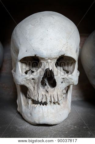 Human Skull Inside A Catacomb
