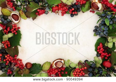 Background border of autumn fruit and nuts over parchment background.