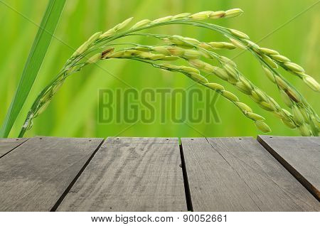 Terrace wood and beautiful paddy rice on green background