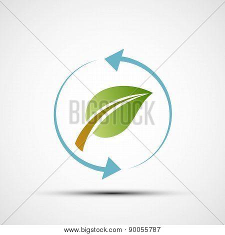 Green Leaf With Blue Arrows