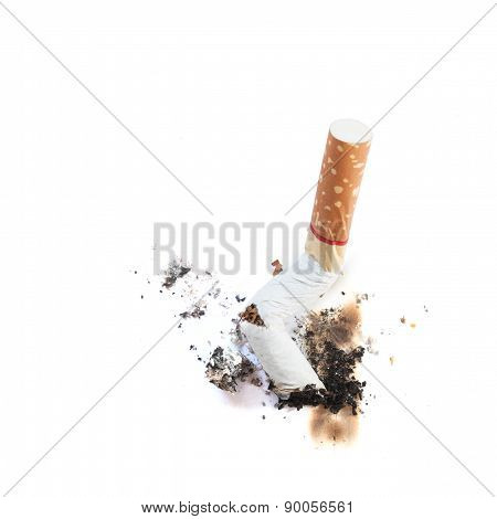 Cigarette Butts.
