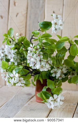 A Bouquet Of Flowering Branches Of Fruit Trees On The Unpainted Wooden Background