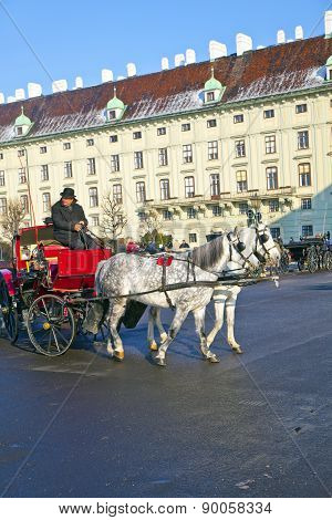 Driver Of The Fiaker Waitinmg For Tourisdts In Vienna