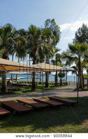 ?haise lounge with sunshade and palms