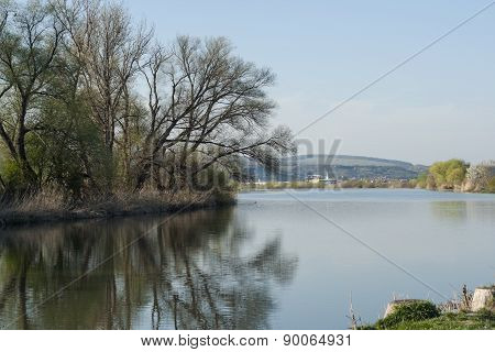 Mures river bank