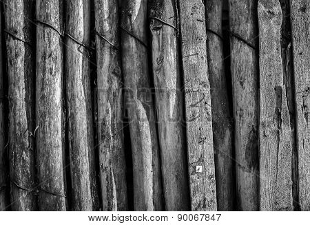 Old Aged Wood Timber Planks