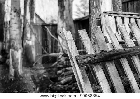 Wooden Gate And Tree Trunks