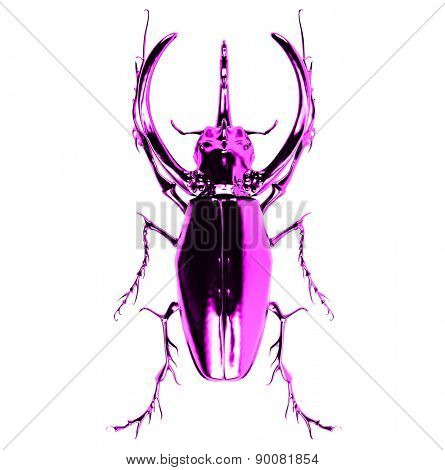 pink  rhinoceros beetle. 3D rendering