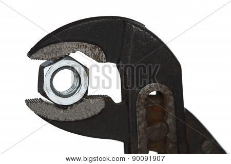 Gripper And Screw