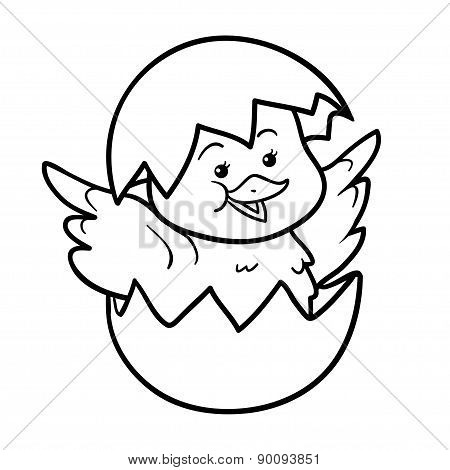 Coloring Book (chick And Egg)