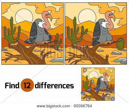 Find Differences (vulture)