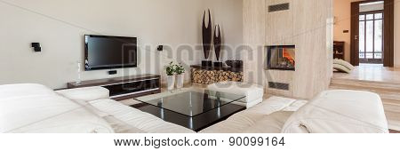 Luxury And Modern Living Room