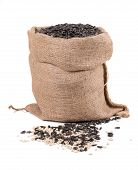 pic of semen  - Close up of black sunflower seeds in bag - JPG