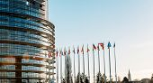 pic of european  - All European Union Flags in Strasbourg France at the European parliament on a clear sky day
