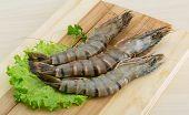 image of tiger prawn  - Raw tiger shrimps on the wood board - JPG