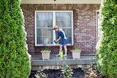 stock photo of window washing  - Woman washing the exterior windows of a house with an attachment on a hose as she cleans and refreshes the house after winter for the new spring season view framed by two evergreen cypresses - JPG