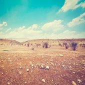 stock photo of samaria  - Big Stones in Sand Hills of Samaria Israel Retro Effect - JPG
