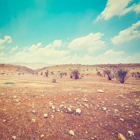 foto of samaria  - Big Stones in Sand Hills of Samaria Israel Retro Effect - JPG