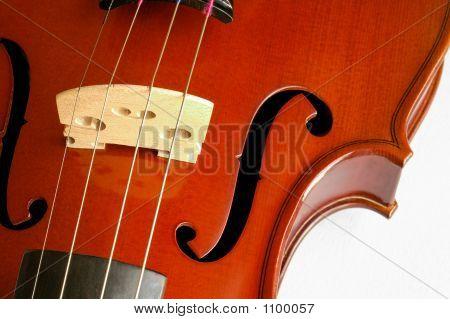 Musical Instruments: Violin Closeup Showing The Bridge (10)